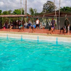 Batalhão Ambiental ainda tem vagas disponíveis para natação, futebol e judô