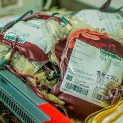 Hemoap lança campanha para aumentar estoque de sangue no fim do ano