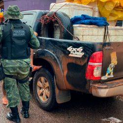 Batalhão Ambiental apreende 330 quilos de pescado em Santana
